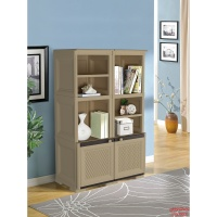 library_cabinet